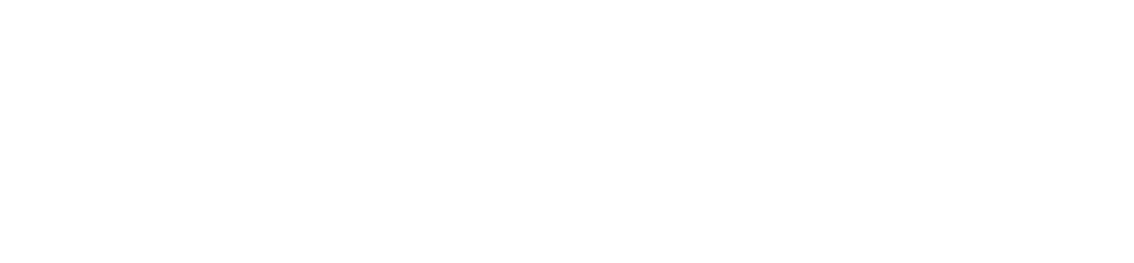 Dubai International Award for Best Practices